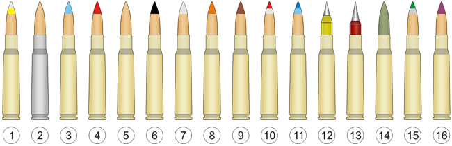Variants of the .50 BMG cartridge